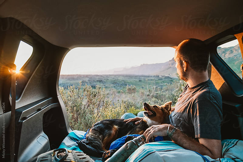 Man and his dog camped in the back of a car enjoying the view at sunset by Micky Wiswedel for Stocksy United