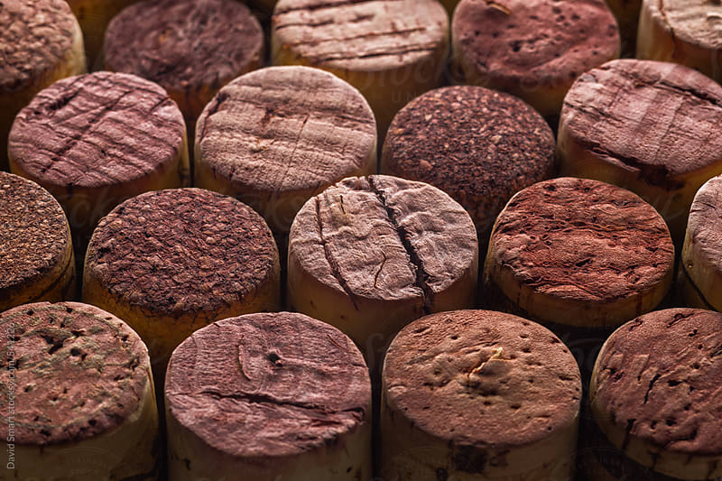 Close-up of several old wine corks  by David Smart for Stocksy United
