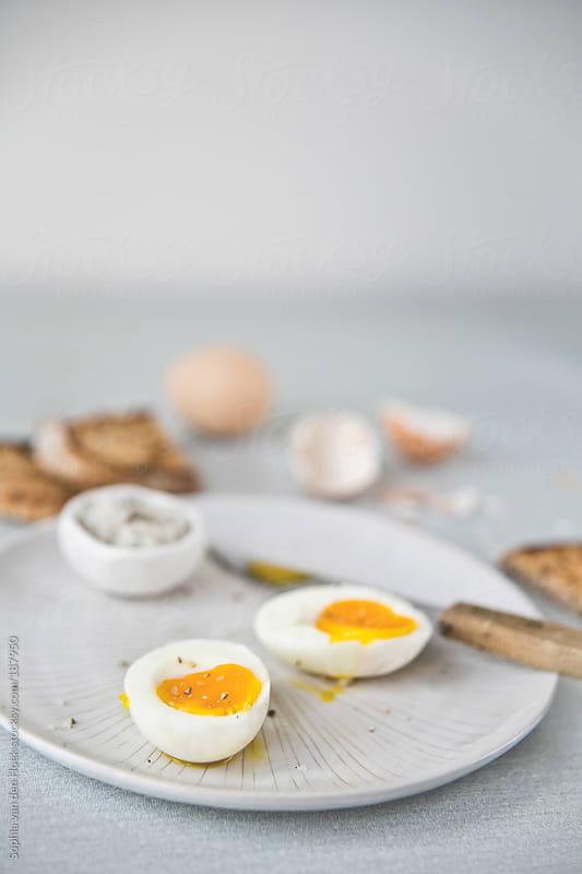 Egg for breakfast by Sophia van den Hoek for Stocksy United