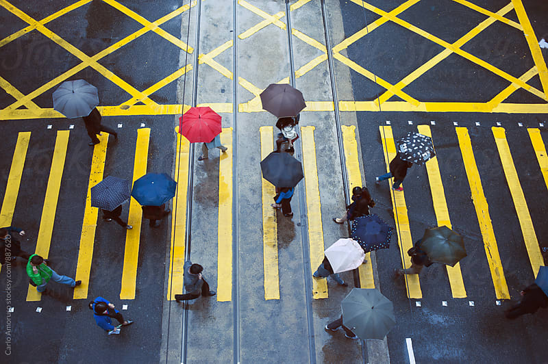 People crossing street on a rainy day by Carlo Amoruso for Stocksy United