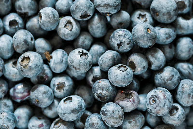 Blueberries background by Alexey Kuzma for Stocksy United