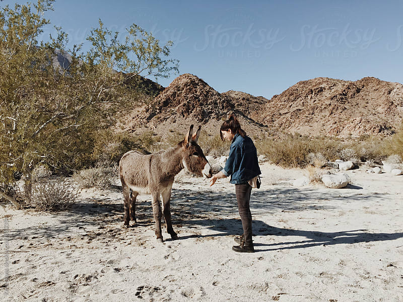 Burro Meets Girl by Kevin Russ for Stocksy United