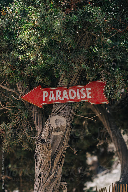 Paradise sign on the beach by Branislava Živić for Stocksy United