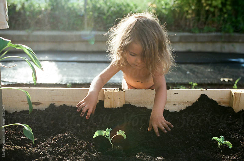 kid gardening by Maria Manco for Stocksy United