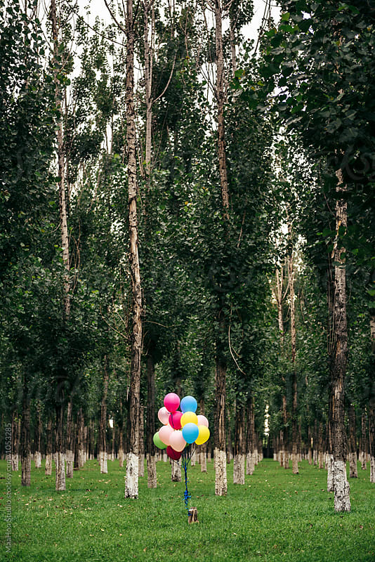 A bunch of balloons in park by Maa Hoo for Stocksy United