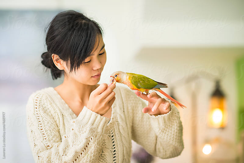 Young woman tenderly feeding a parrot by Lawren Lu for Stocksy United