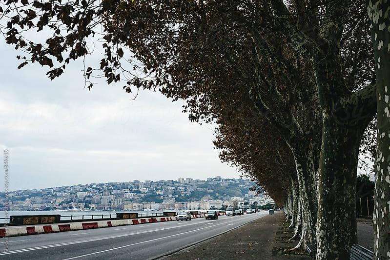 Street by the sea, traffic in Naples, Italy by Aleksandar Novoselski for Stocksy United