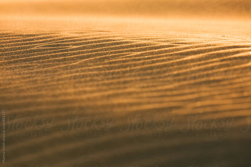 Glittering desert sand, blowing in the breeze by Maresa Smith for Stocksy United