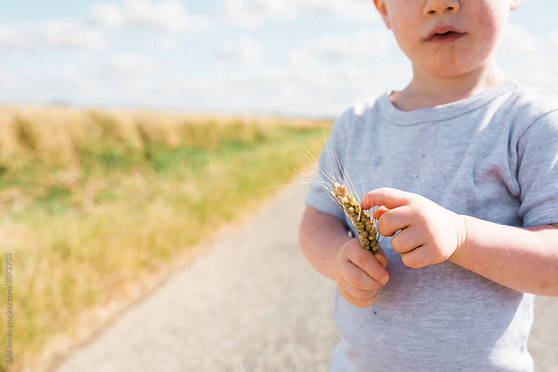 little boy holding wheat by Léa Jones for Stocksy United