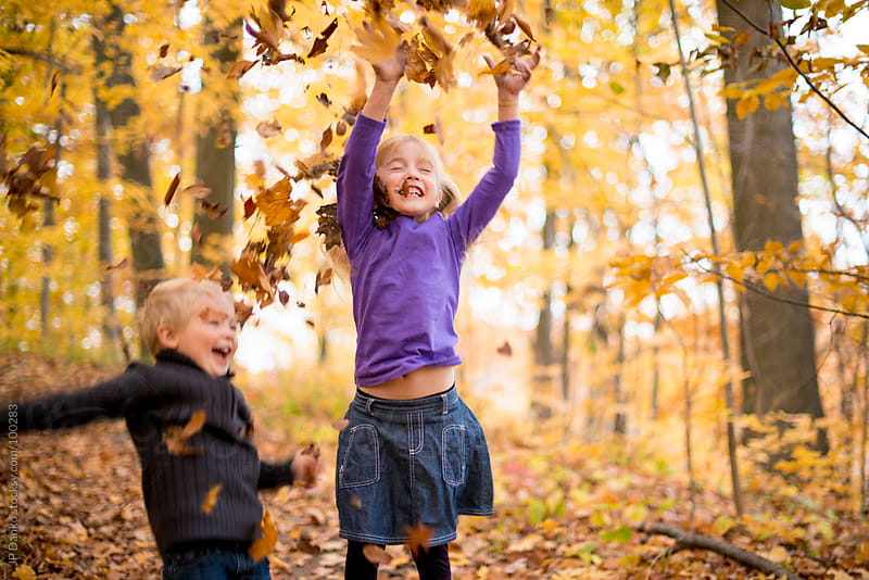 Kids Playing In Yellow Fall Leaves In Autumn by JP Danko for Stocksy United