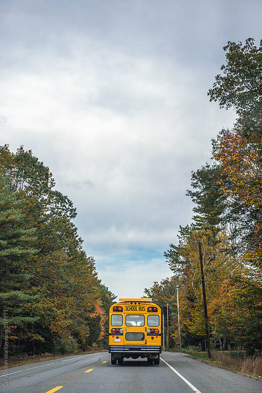 School bus drives down a rural road in autumn by Cara Dolan for Stocksy United