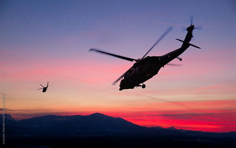 Black Hawks at Sunset by Leander Nardin for Stocksy United