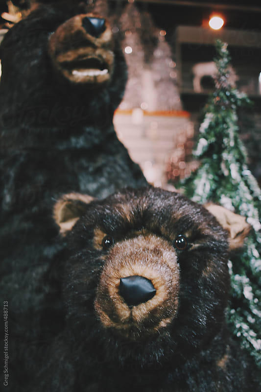 Stuffed black teddy bear and a Christmas holiday decoration scene by Greg Schmigel for Stocksy United