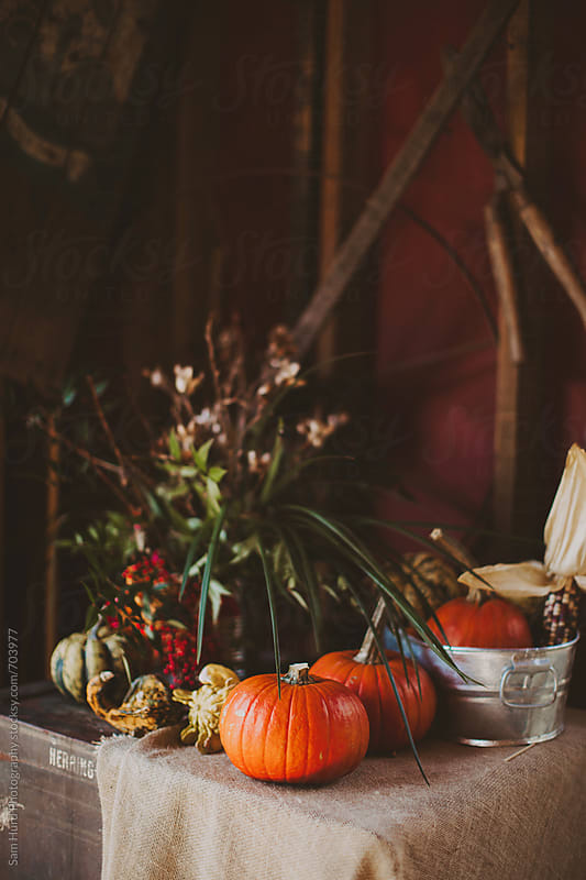 autumnal table setting by Sam Hurd Photography for Stocksy United