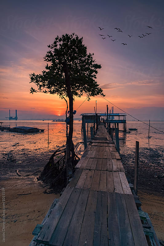 A serene view from a fisherman jetty by Jacobs Chong for Stocksy United
