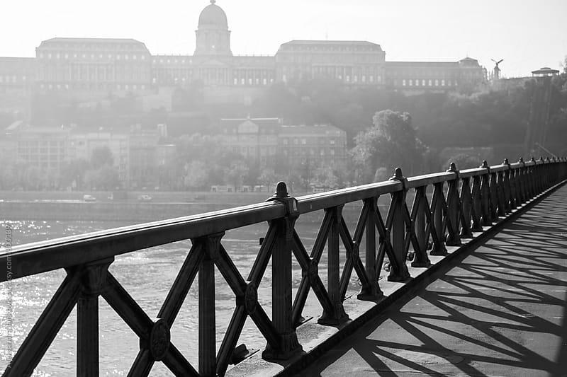 The Bridge by Aleksandra Jankovic for Stocksy United
