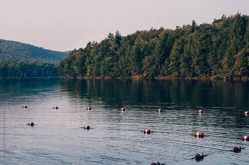 summer day on a lake in the Catskill Mountains by Deirdre Malfatto for Stocksy United