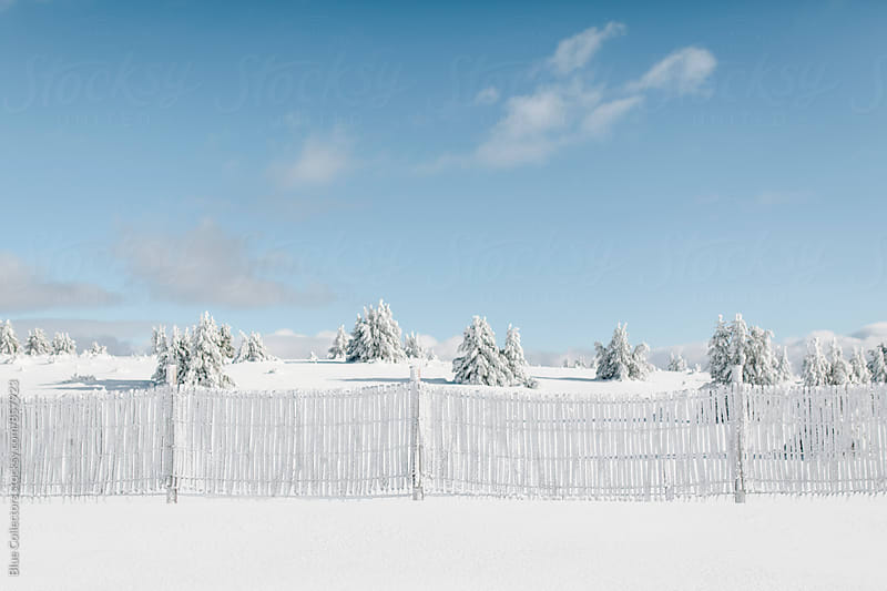 Snow fence by Blue Collectors for Stocksy United