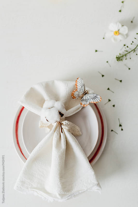 Spring place setting by Tatjana Ristanic for Stocksy United