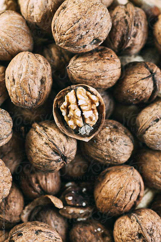 Walnuts by Giada Canu for Stocksy United