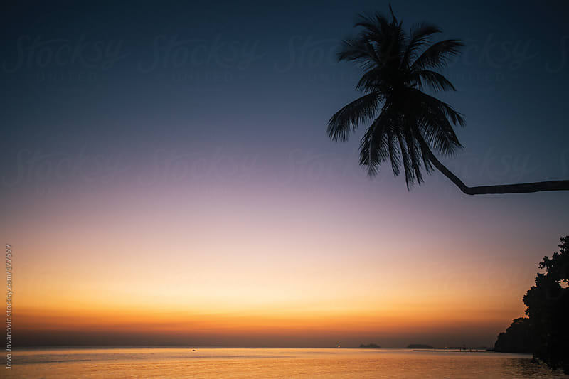 Breathtaking tropical sunset on island beach by Jovo Jovanovic for Stocksy United