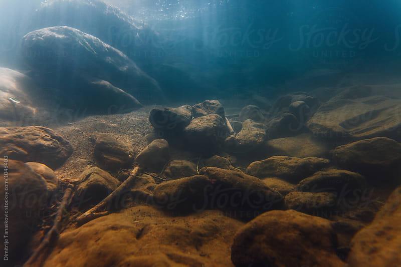 Underwater landscape by Dimitrije Tanaskovic for Stocksy United