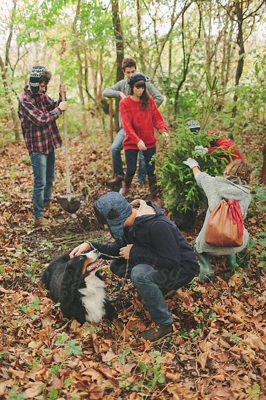 People Planting a Pine Tree . Christmas by HEX. for Stocksy United