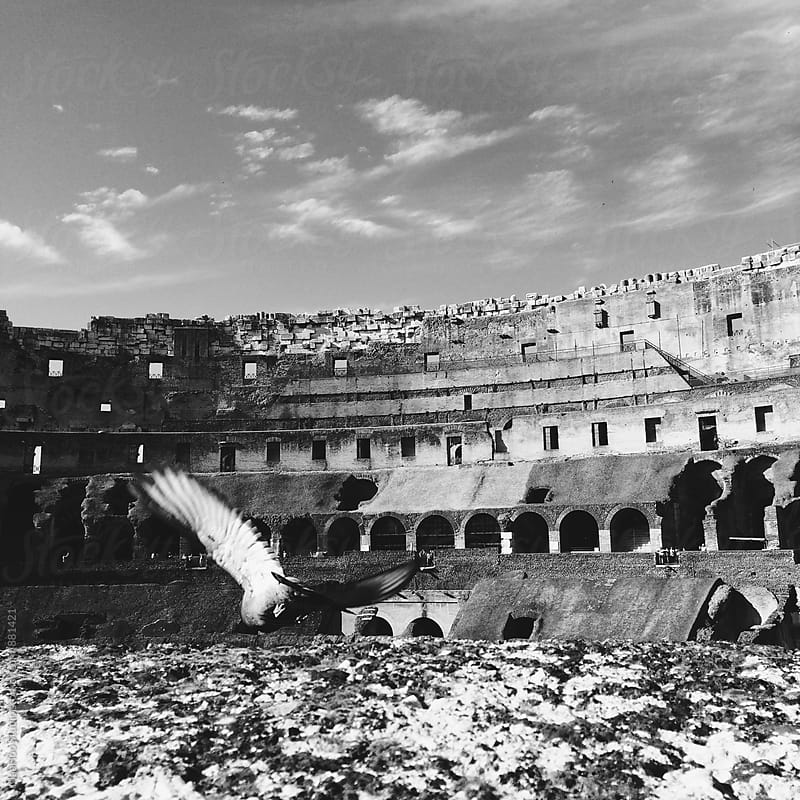 The Roman Colosseum by Maa Hoo for Stocksy United