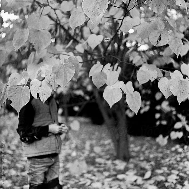 Boy hiding in a tree with heart shaped leaves by Cameron Whitman for Stocksy United