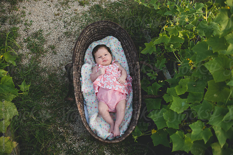 Baby basket from above by Courtney Rust for Stocksy United