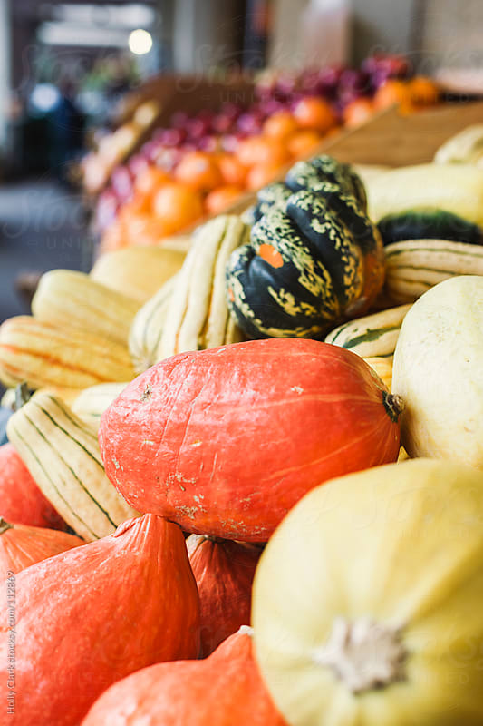 Yellow and orange winter squash for sale at a market. by Holly Clark for Stocksy United