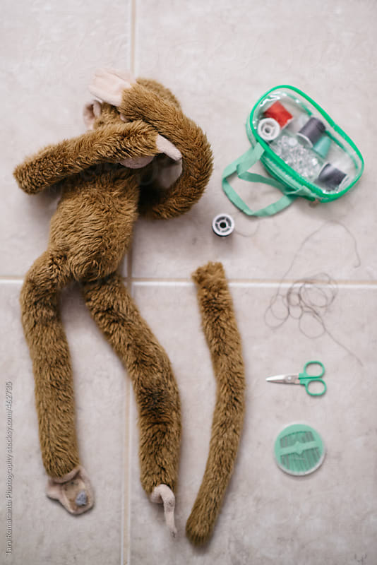 a stuffed animal monkey covers its eyes in preparation for a tail reattachment procedure by Tara Romasanta for Stocksy United