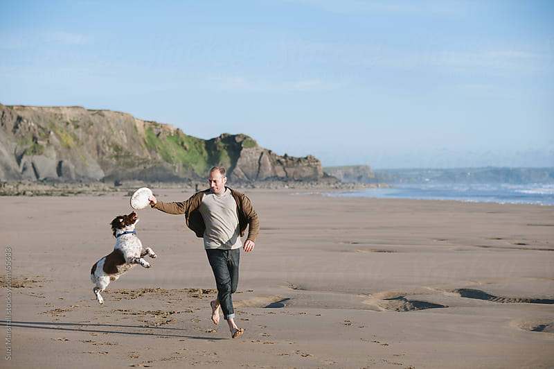 Man running along a beach with a dog jumping to catch a frisbee by Suzi Marshall for Stocksy United