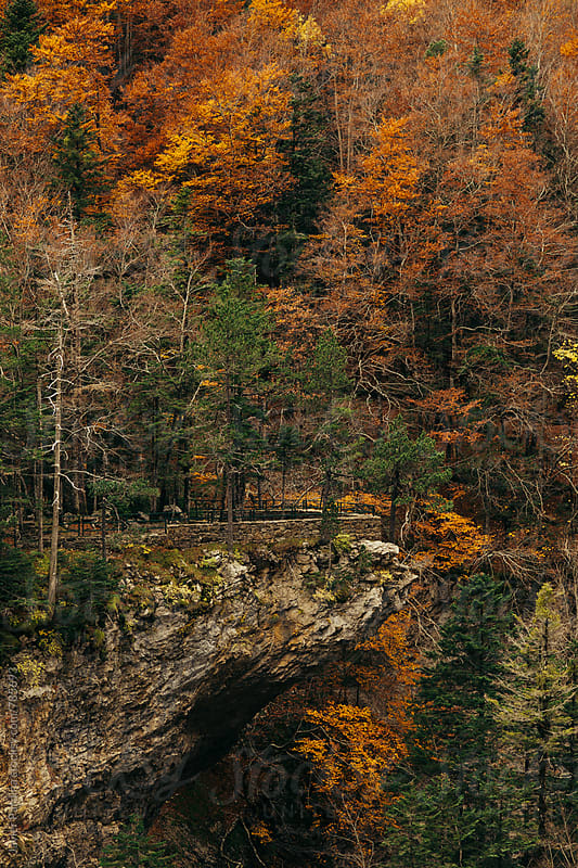 part of the mountains with autumn colorful trees by Javier Pardina for Stocksy United