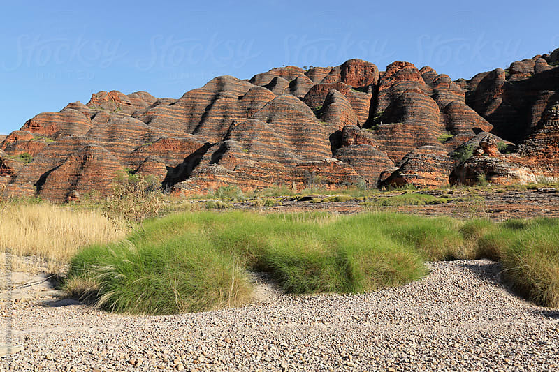 Bungle Bungles. Western Australia. by John White for Stocksy United
