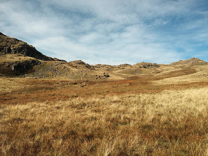 Grassy landscape in the Lake District by Neil Warburton for Stocksy United