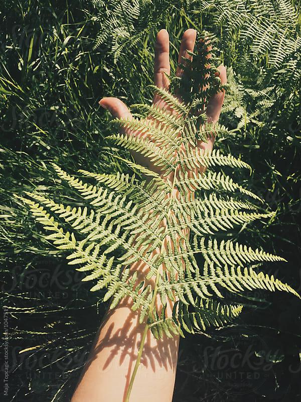 Woman holding a fern leaf by Maja Topcagic for Stocksy United