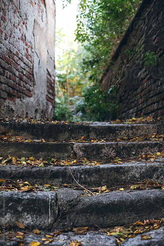 Old stone stairs  by Dimitrije Tanaskovic for Stocksy United