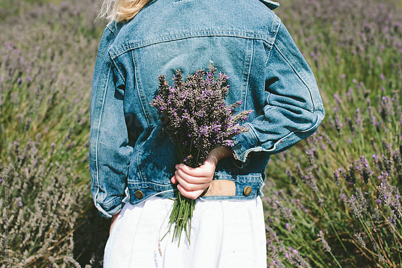 Lavender by Helen Rushbrook for Stocksy United
