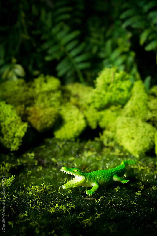 An alligator or crocodile  near moss by J Danielle Wehunt for Stocksy United