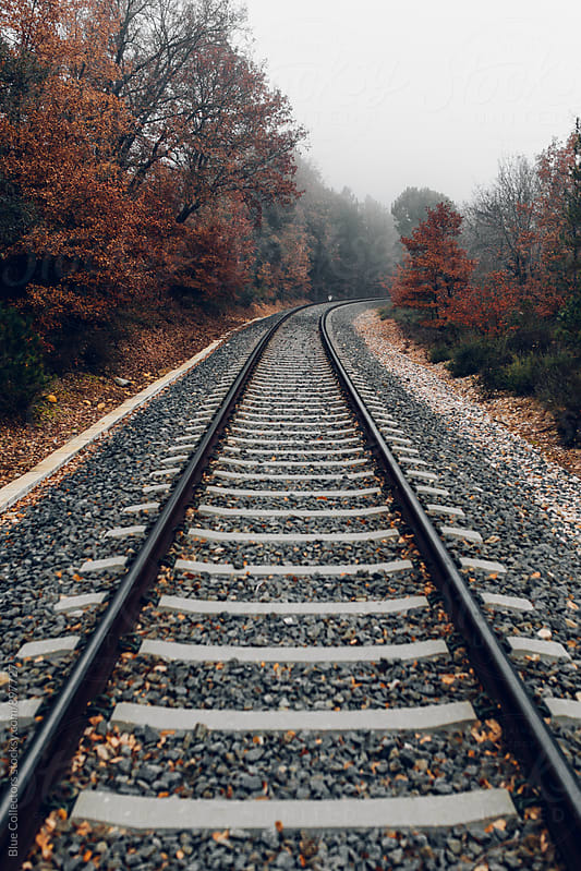 Railway line in autumn by Blue Collectors for Stocksy United
