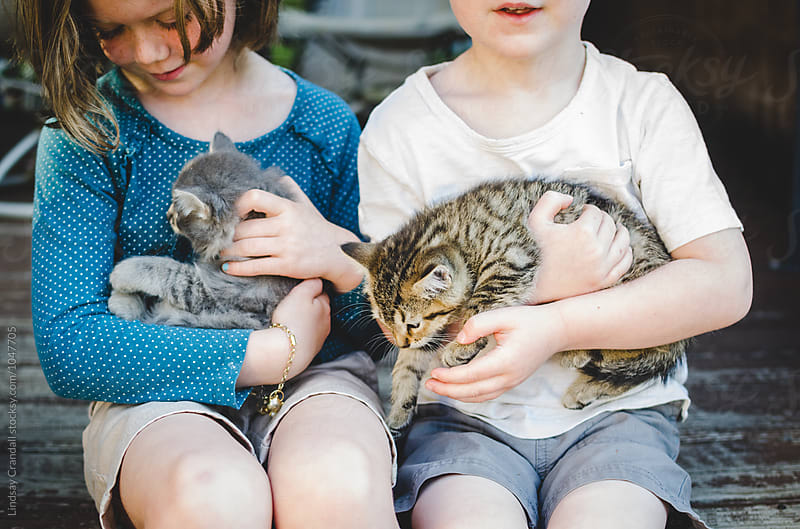 Two children sitting together and holding new kittens by Lindsay Crandall for Stocksy United
