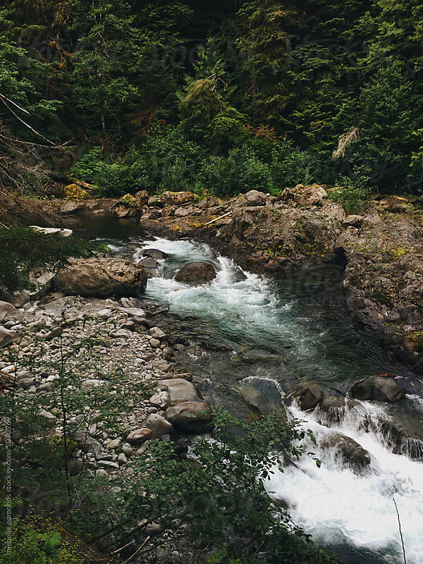 River with Rapids Running through the Olympic National Park in Washington by michelle edmonds for Stocksy United