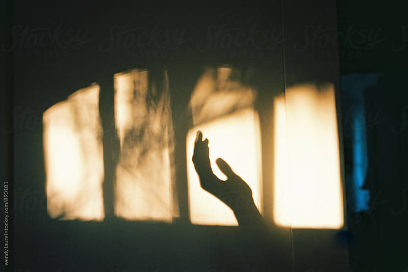 shadow of hand in window on wall with golden light by wendy laurel for Stocksy United