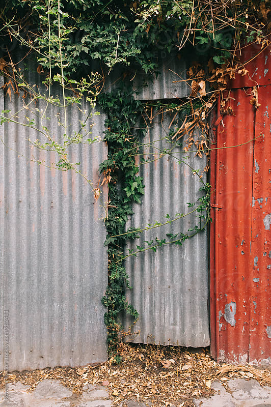 Corrugated iron doorway by Rowena Naylor for Stocksy United