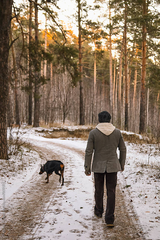 Back view of adult man and Doberman walking in winter forest by Danil Nevsky for Stocksy United