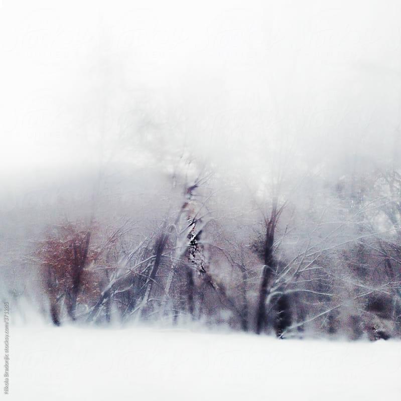hazy snowy scene by Nikola Bradonjic for Stocksy United