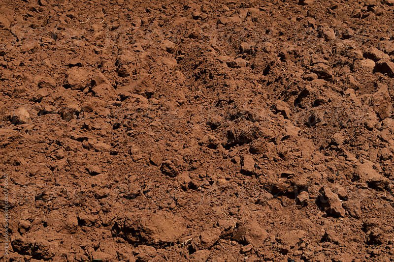 brown soil background by Sonja Lekovic for Stocksy United