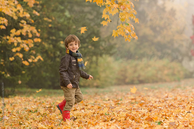 Boy playing in Fall colourful leaves by Rebecca Spencer for Stocksy United