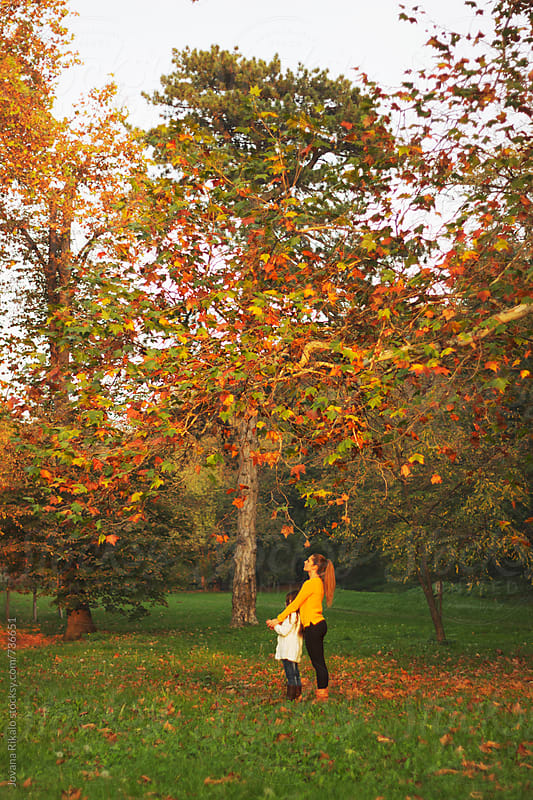 Two girls standing under the tree in nature by Jovana Rikalo for Stocksy United
